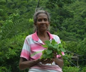 Maritza Isabel Quiroz Leiva, de 60 años, murió baleada en San Isidro de la Sierra, corregimiento de Bonda.