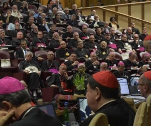 """El sínodo no ha sido un encuentro """"político"""", sino un acontecimiento eclesial."""