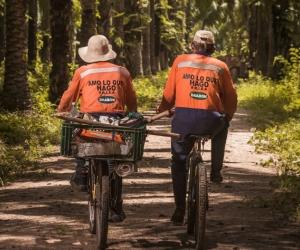 Los cultivadores de la palma de aceite son el corazón de los procesos sostenibles.