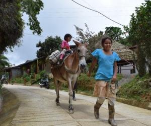 La Vía Minca- El Campano- La Tagua, la cual promueve el turismo ecológico y mejora la intercomunicación terrestre del distrito de Santa Marta.