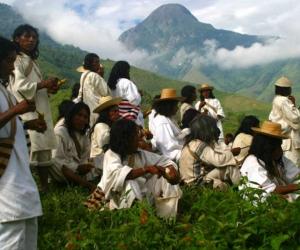 Comunidad indígena de la Sierra Nevada de Santa Marta afectada por incendios forestales espera solidaridad de la comunidad