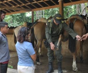 La Policía inspeccionó el estado de los caballos y mulas en el Parque Tayrona.