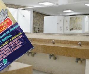 Baño de referencia
