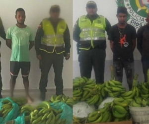 Capturados en Zona Bananera.