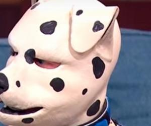 Tom Peters, el hombre que se cree un perro dálmata.