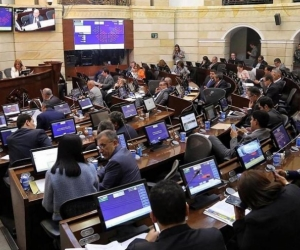 Plenaria del Senado de la República.