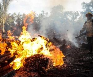 Bomberos sofocan incendio en la amazonía brasileña.