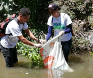 Voluntarios en recolección de residuos