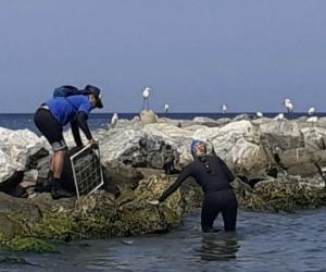 Toma de muestra de aguas en playas de Santa Marta