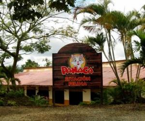 La fiesta de cumpleaños se realizó el domingo en el parque Panaca.
