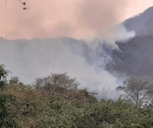 Incendio en la Sierra Nevada de Santa Marta