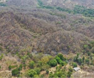 Incendio en Tigrera.