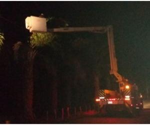 El vendaval provocó la caída de árboles sobre las redes en el municipio de Aracataca, afectando varios sectores de esta población.