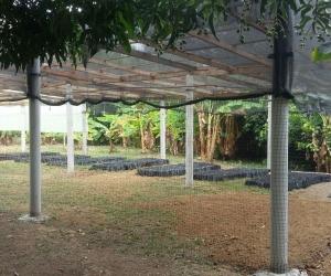 Este es un vivero ambiental que ya fue inaugurado en Montería.