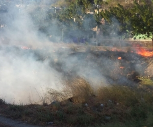 Imágenes del incendio de este viernes en la tarde.