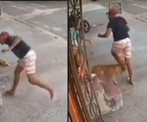 El perro mordió a un delincuente que iba a robar los teléfonos de dos jóvenes