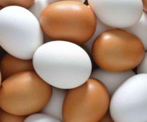Fenavi y la FCC resaltan que el consumo del huevo debe realizarse dentro de una dieta balanceada.