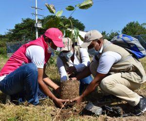 Corpamag participa en la sembratón nacional.