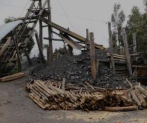 Al parecer, obtenían carbón de manera ilegal y generaban grave daño ambiental.