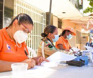 Esterilizaciones de la Alcaldía en Santa Marta.