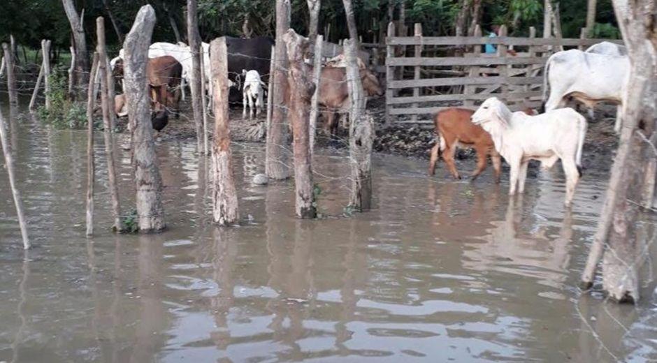 Aspecto de las inundaciones en San Marcos (Sucre).