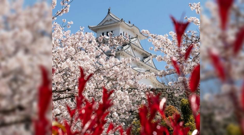 La ciudad de Himeji es una ciudad localizada en la prefectura de Hyōgo, Japón.