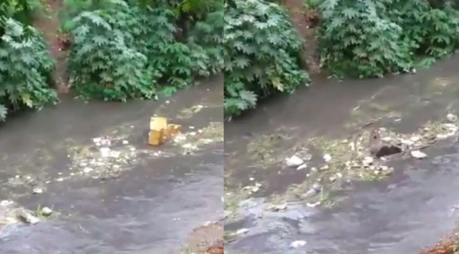 Basura arrastrada por el Río Manzanares.