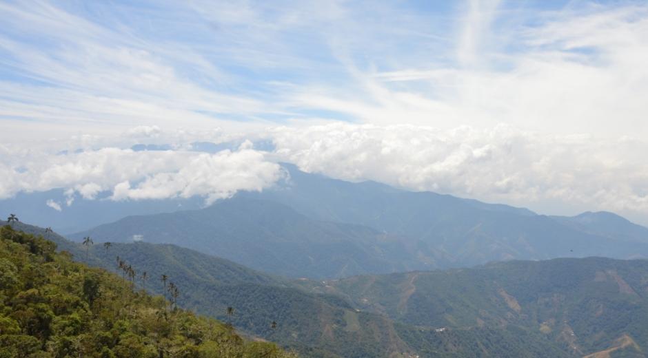 Cuencas de la Sierra Nevada y la Ciénaga