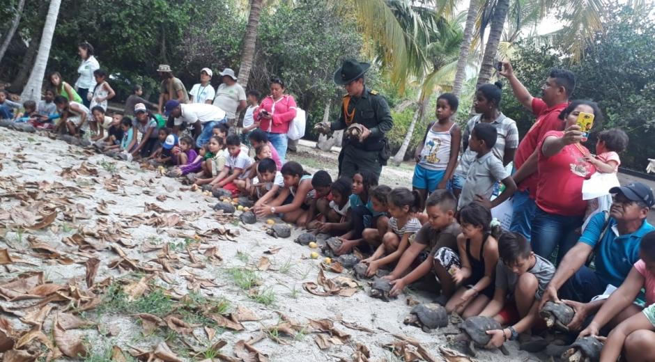 En el Día Internacional de la Biodiversidad, Corpamag realizó la liberación de 500 morrocoyos amenazados por tráfico ilegal