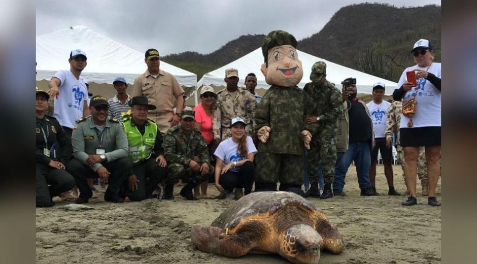 Liberación de especies marinas en playa de Inca Inca