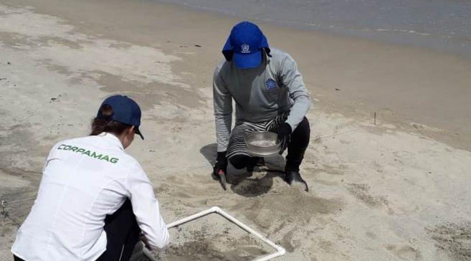 Monitoreo en playas de Santa Marta