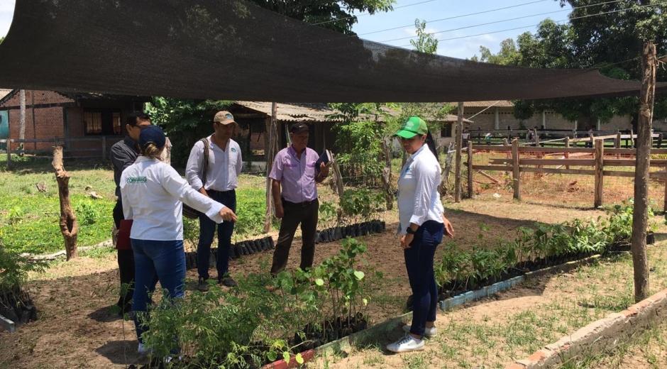 Actividades ambientales en municipios del Magdalena