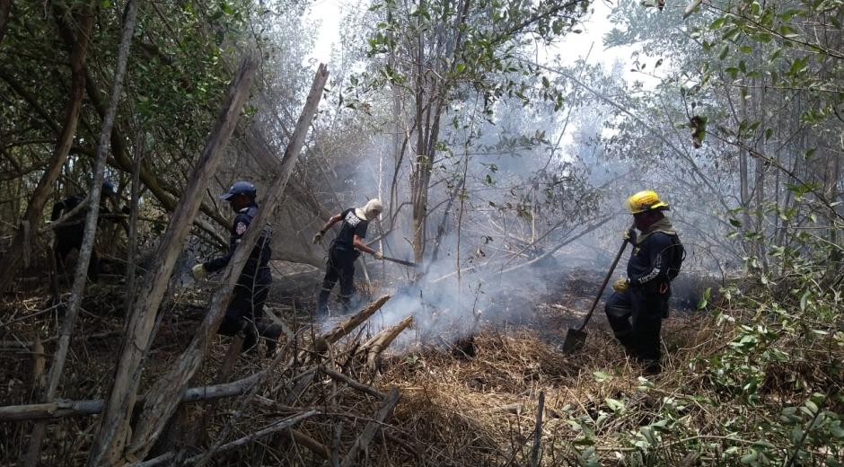 Desde la tarde del martes se presenta el incendio.