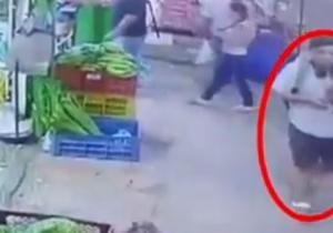 Una cámara de seguridad grabó el momento cuando el ladrón se llevó la mascota.